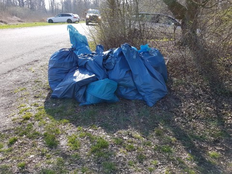 Aktion Saubere Ufer 2017